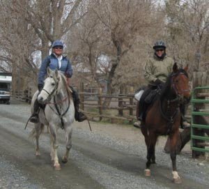 Horseback Riding Nevada